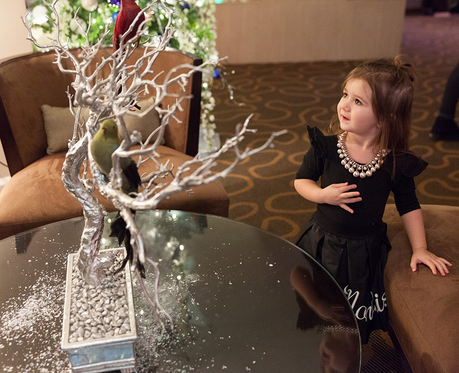 A little girl looks at Christmas decorations at the Swissotel.