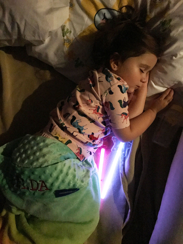 Zelda sleeping at the Swissotel in Chicago.