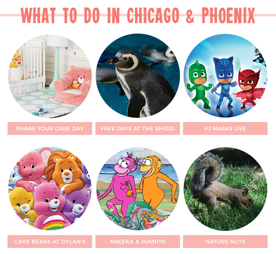 What to do this weekend in Chicago: Share Your Care Day, Free Days at the Shedd and more!