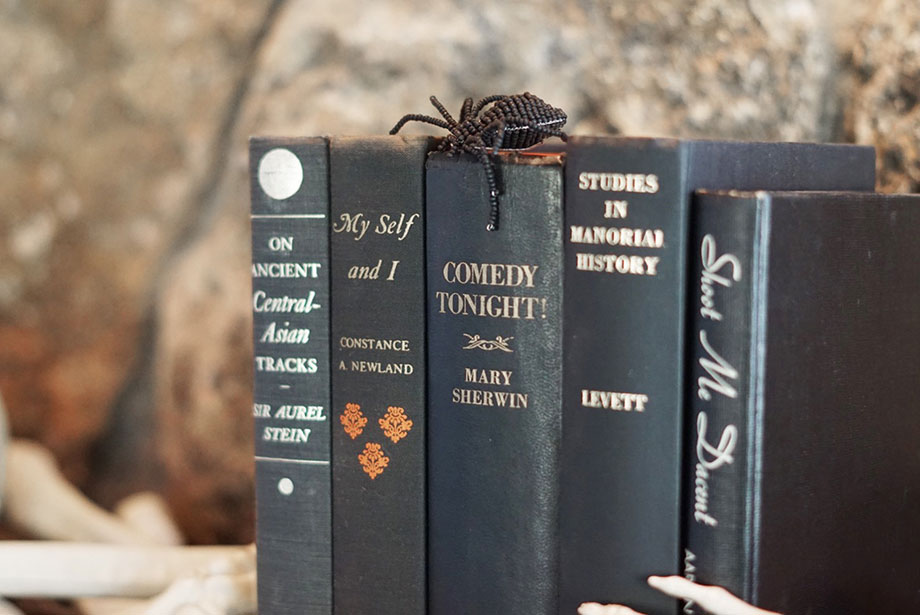 A stack of Halloween black books with a large spider.