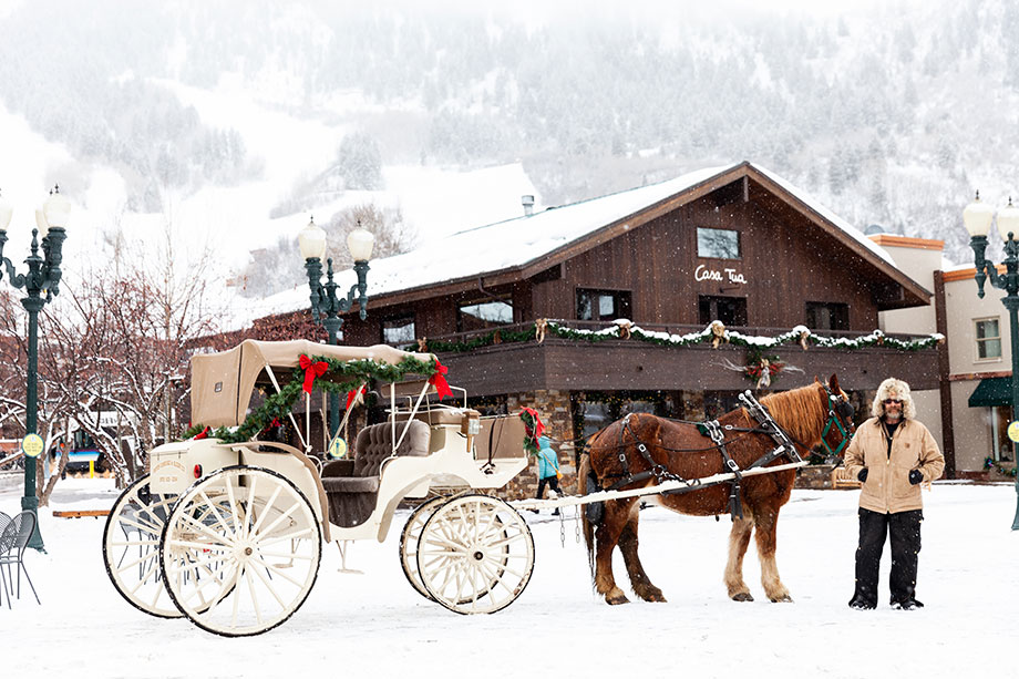 A horse and carriage ride in Aspen.