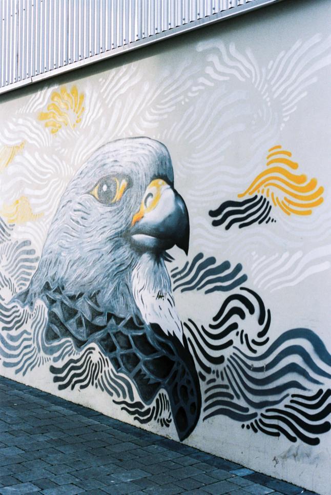 Street art in Reykjavik.