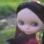 Lensbaby Muse – Laurel