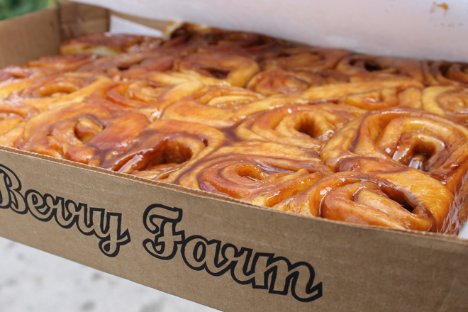 cinnamon bun knaus berry farm