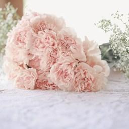 light pink carnation bouque