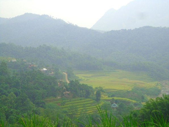 Rainy season in Southeast Asia is the best time to see verdant, green rice terraces