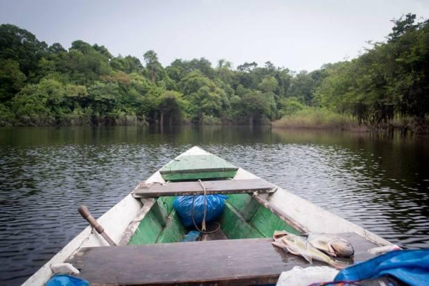 Taking a tour on the Amazon River
