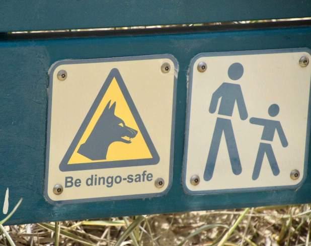 dingosafe