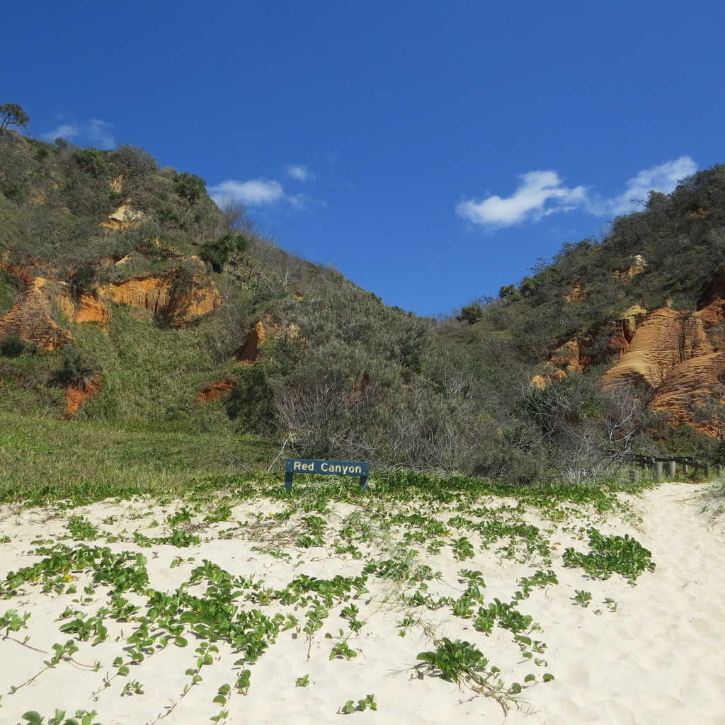 Best Time To Drive On Fraser Island