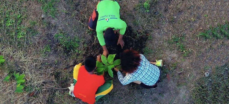 Des agriculteurs travaillant avec le Projet cacao apprennent des techniques durables pour faire face au changement climatique.