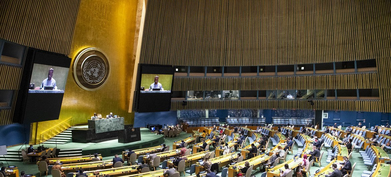 ¿Por quién velan las Naciones Unidas? Los casos de Irak y Siria