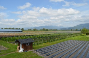 fraser valley farm tours