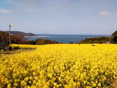 【キースのブログ7】Visit to Nokonoshima