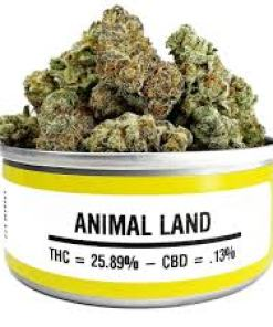 Animal Land marijuana