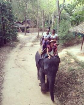 Riding an Elephant Siam Safari tour