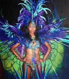 Humming Bird Carnival Nationz