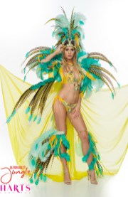 Papilio-Harts Carnival