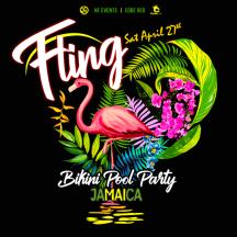 Fling x Ninja Fete Jamaica Carnival 2019