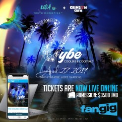 Vybe Coolers and Cocktails 2019