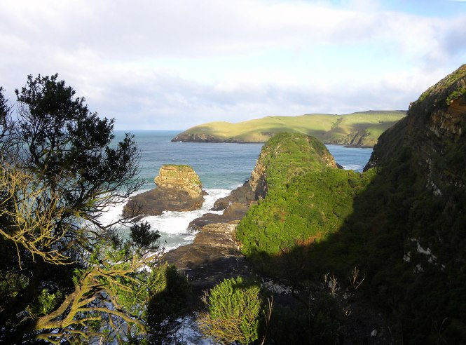 South Island Catlins, New Zealand road trip
