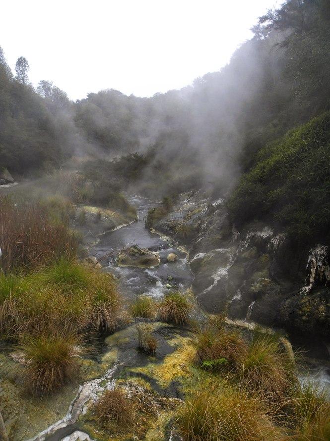 Waimangu Volcanic Valley, North Island New Zealand Road Trip