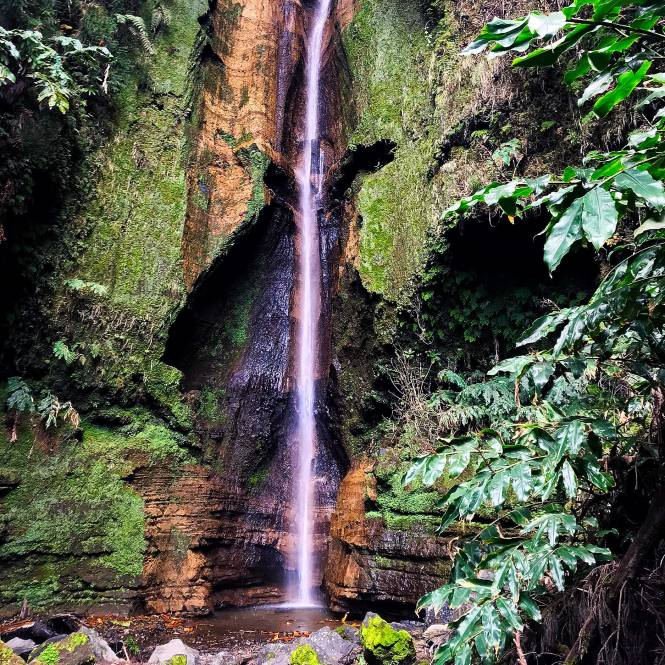 Furnas waterfall in Sao Miguel, Azores
