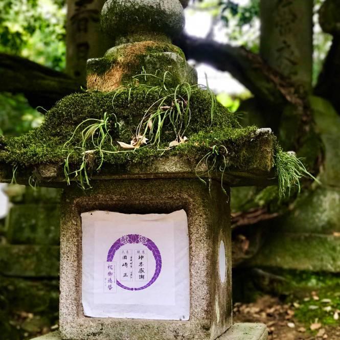 Lantern at Kasuga Taisha in Nara, Japan