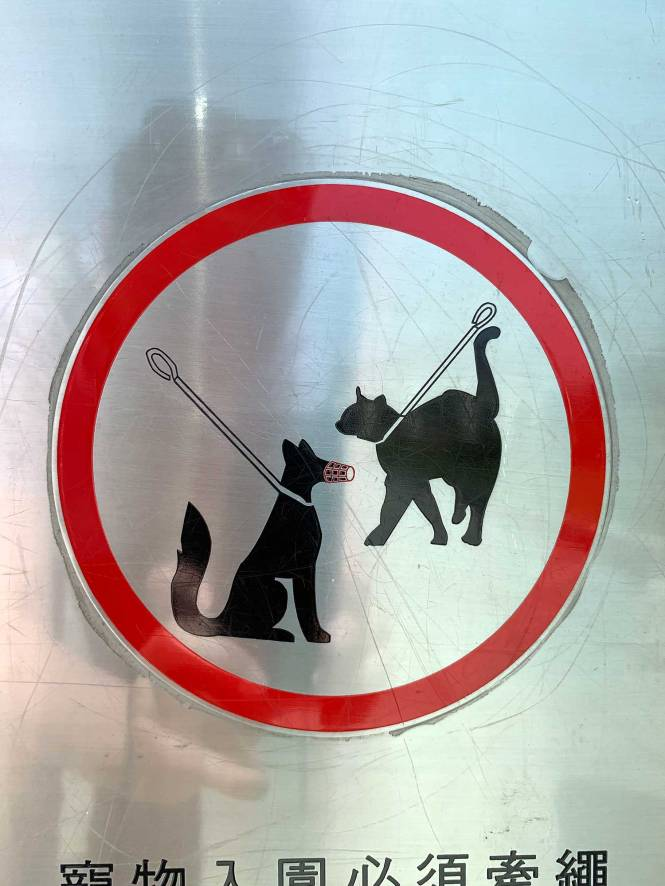 """""""Cat on a leash"""" sign in Taipei"""
