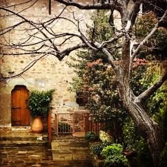 Roussanou Monastery doorway and tree