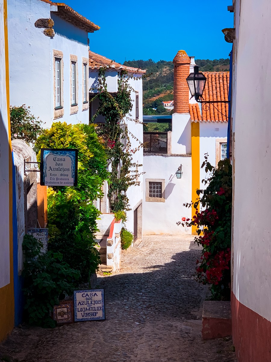 Shop signs lining an Obidos alleyway