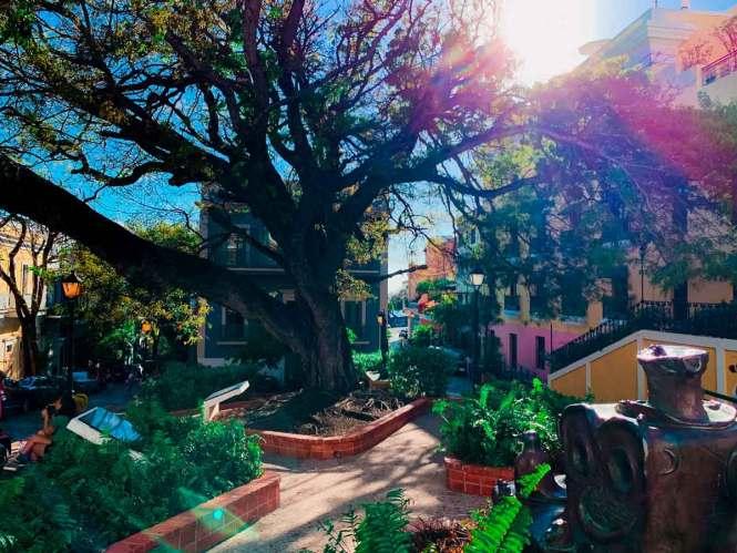 sunny plaza in old san juan