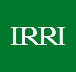 International Rice Research Institution (IRRI)
