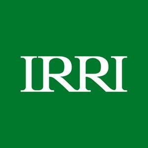International Rice Research Institution (IRRI)