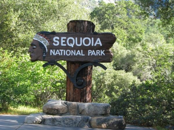 sequoia-natl-park
