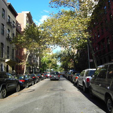 A Treelined 17th Street: Some greenery in NYC