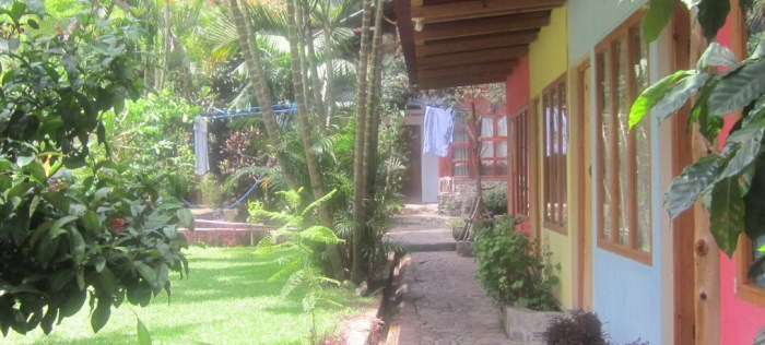 Hostel San Marcos - chill vibe, just watch for spiders!