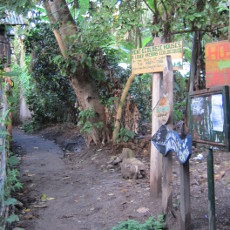 The path to Hostel San Marcos