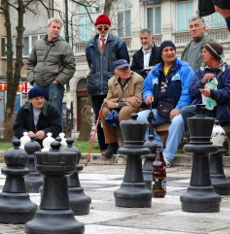 playingchessinparkC