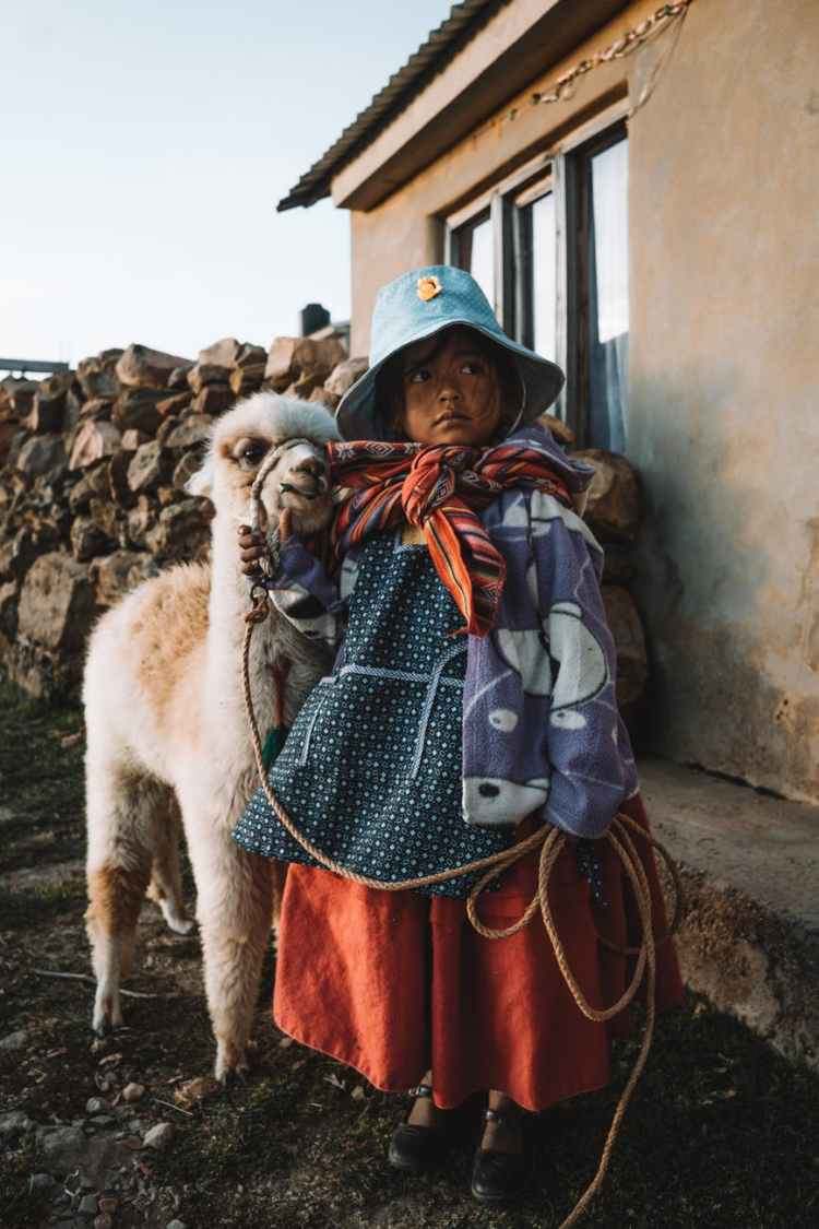young girl holding the rope on a white alpaca close to a house