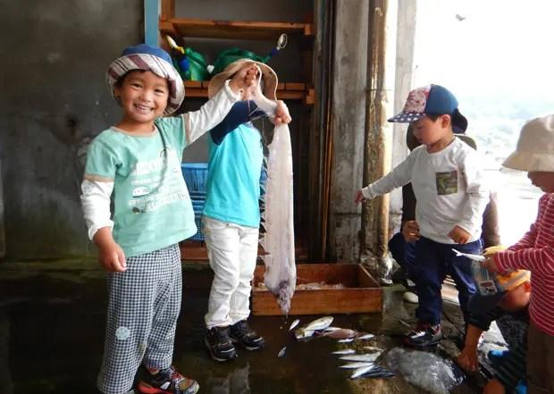 漁港であがったばかりの魚とご対面!