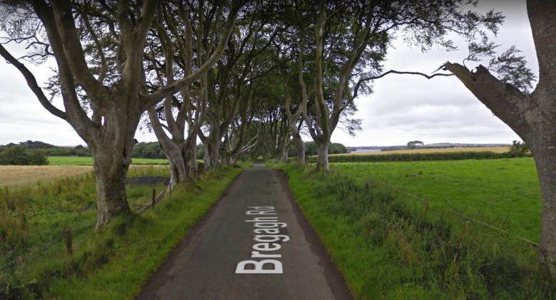 dark-hedges-game-of-thrones.PNG