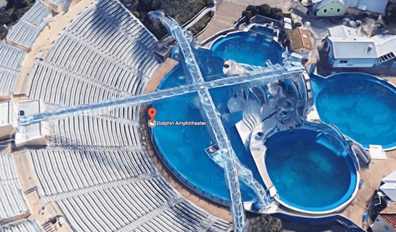 dolhpin-pool-anchorman-2.PNG