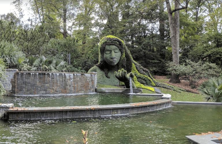 botanical-garden2.PNG