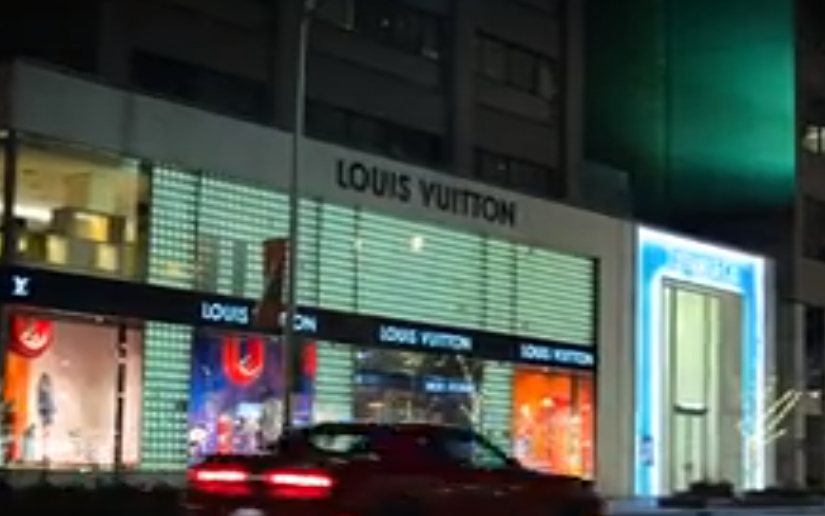 louis-vuitton2.PNG