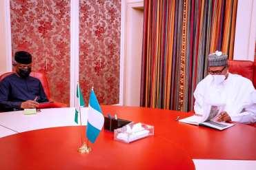 Osinbajo briefs Buhari