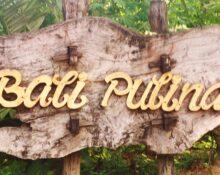 Bali Pulina Luwak Coffee Farm