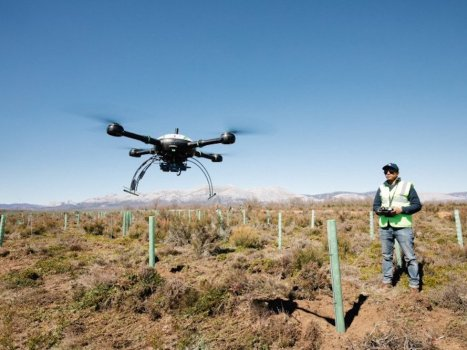 Drone tree planting ecosystem restoration at Land Life Company