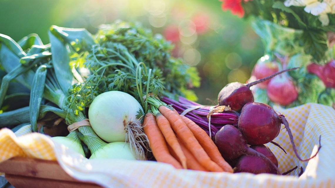 Salat aus Karotten und Roten Rüben