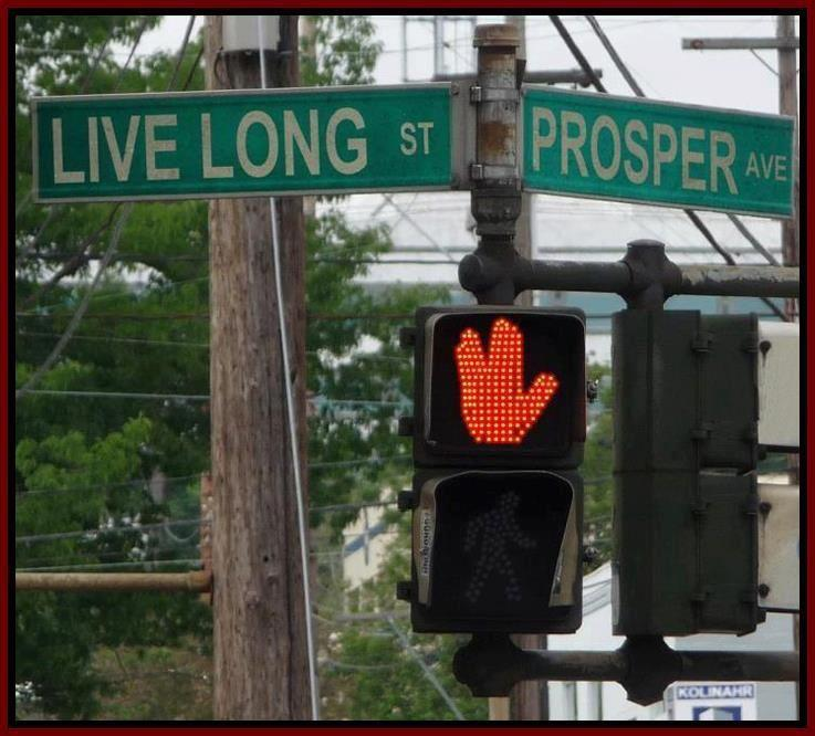 The Corner of Live Long St and Prosper Ave [pic]
