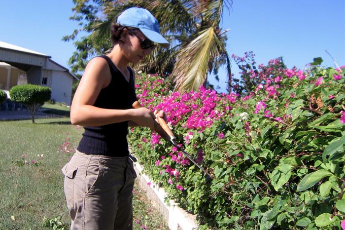Jess-Jamaica-pruning-H